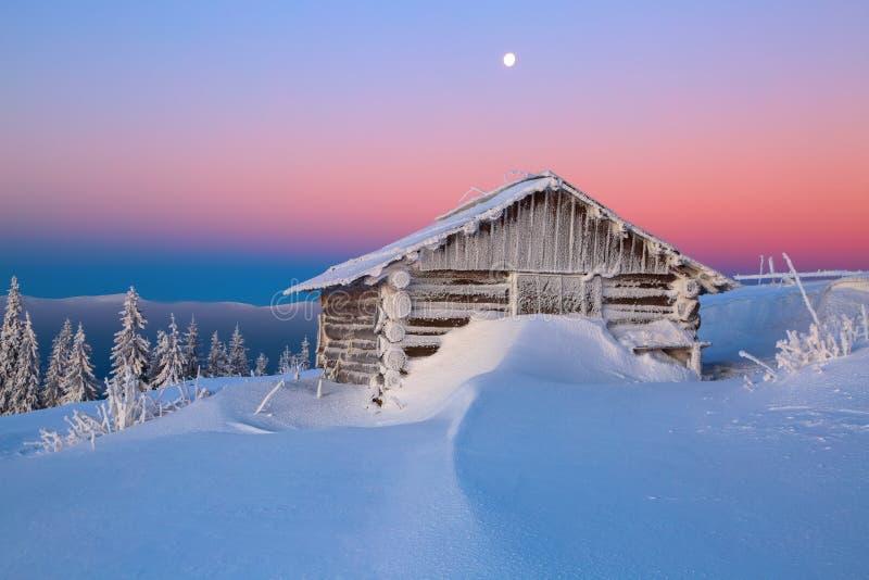 Vieille hutte en bois Congères énormes autour Fond des hautes montagnes Hauts fairtrees freezed avec des flocons de neige photo libre de droits