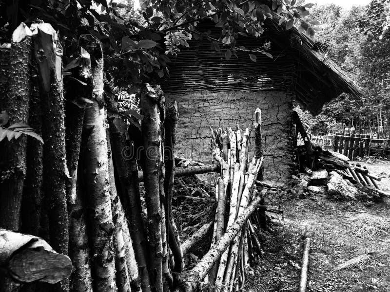 Vieille hutte près de la forêt photos stock
