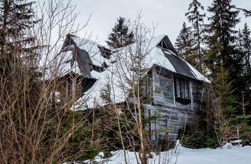 Vieille maison abandonnée dans la forêt photos stock