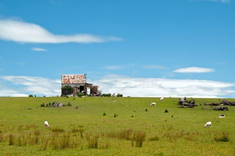 Vieille maison abandonnée sur des terres cultivables photo stock