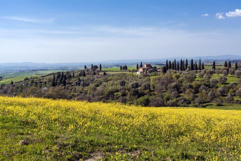 Vieille maison coloniale dans les collines et le pays de la Toscane photos stock