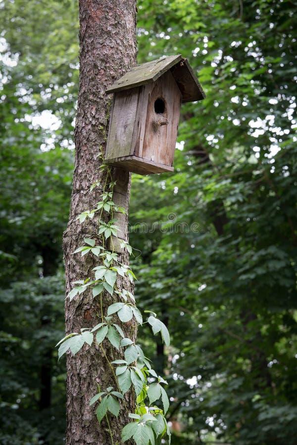 Download Vieille maison d'oiseau photo stock. Image du rouillé - 56480760