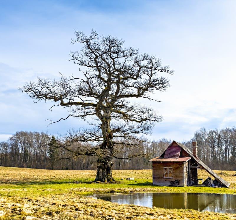 Vieille maison de bain dans viciniy du manoir d'Ungermuizha, Lettonie images stock