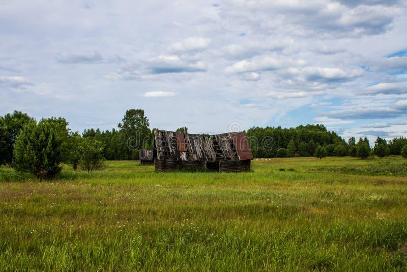 Vieille maison en bois effondrée sur un champ vert photo libre de droits