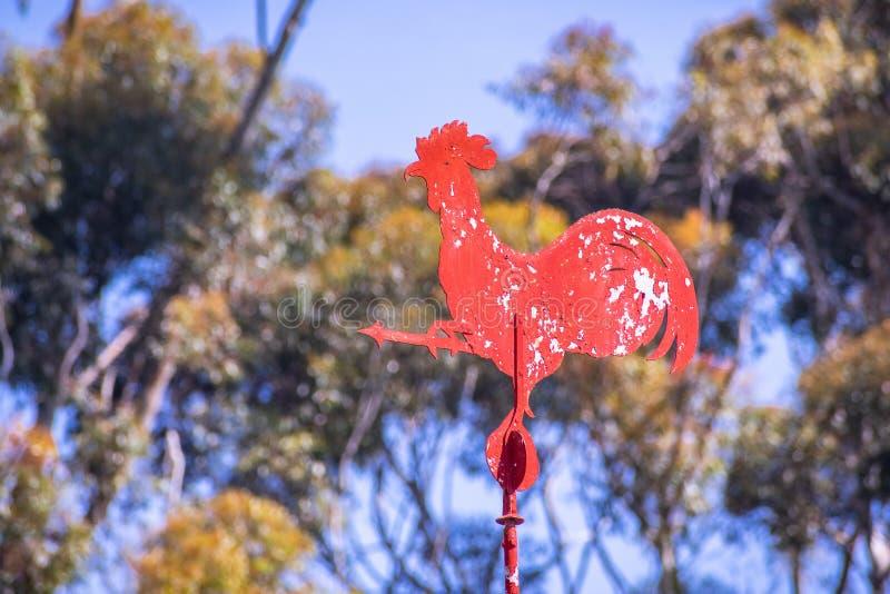 Vieille palette de temps rouge de coq photo stock