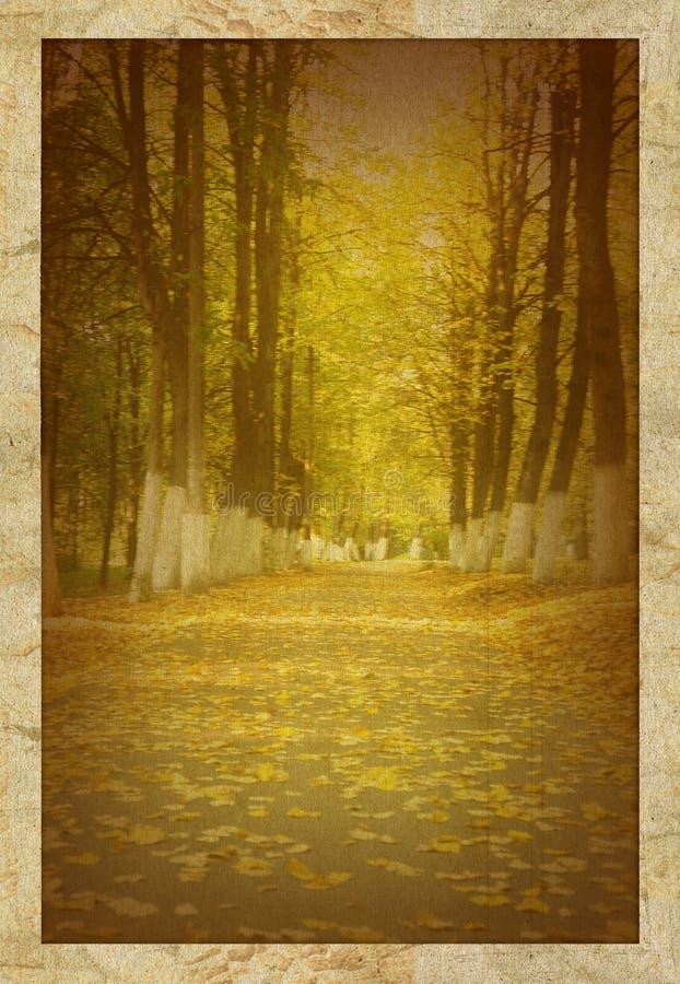 Vieille photo de stationnement d'automne images stock