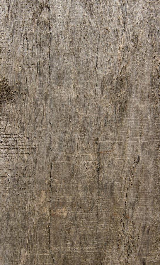 Vieille planche en bois photographie stock libre de droits