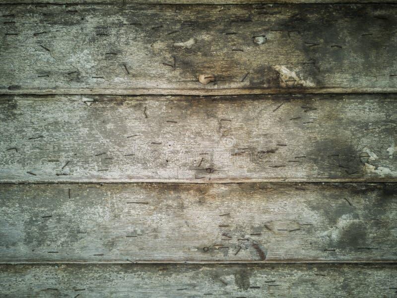 Vieille planche en bois verte avec le clou photo libre de droits