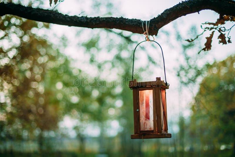 Vieille rétro lanterne de vintage avec la bougie brûlante accrochant sur la branche image libre de droits