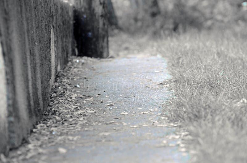 Vieille route photo libre de droits