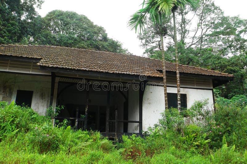 Vieille ruine de maison dans la forêt tropicale photographie stock