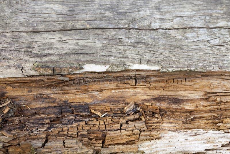 Vieille surface en bois photos stock