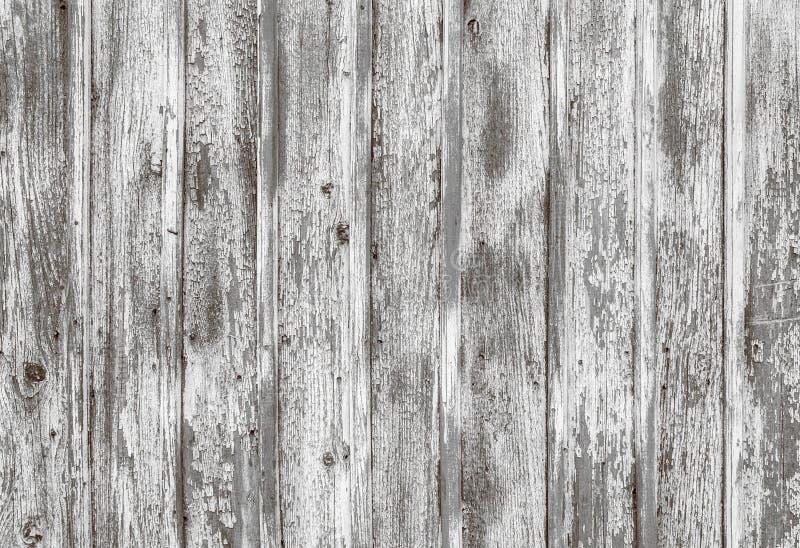Vieille surface en bois peinte blanche minable images libres de droits