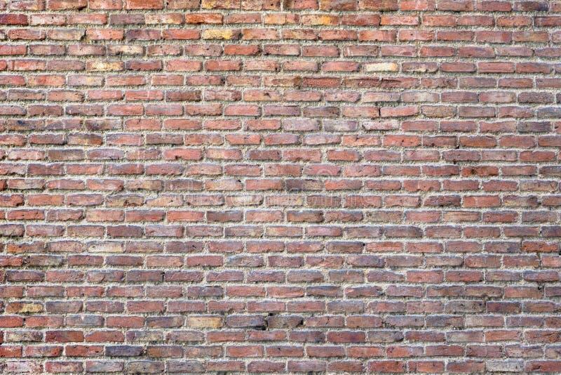 Vieille texture de briques photographie stock