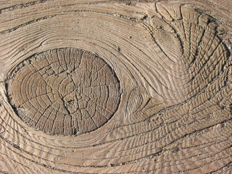 Vieille texture en bois images libres de droits