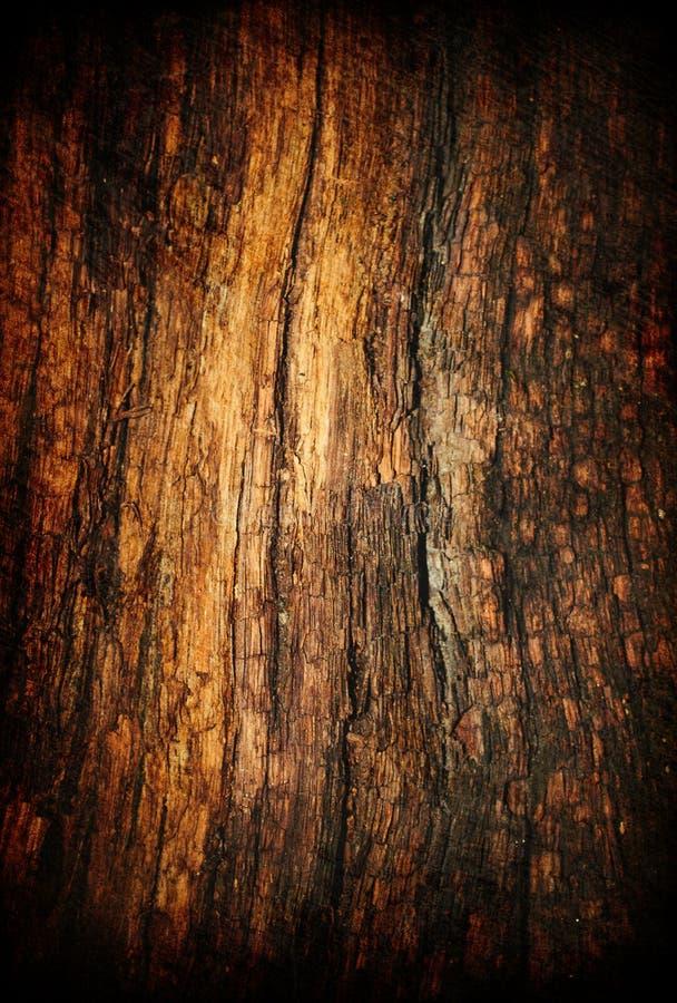 Vieille texture en bois grunge. illustration stock