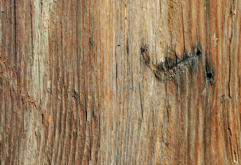 Vieille texture en bois même unique photos libres de droits