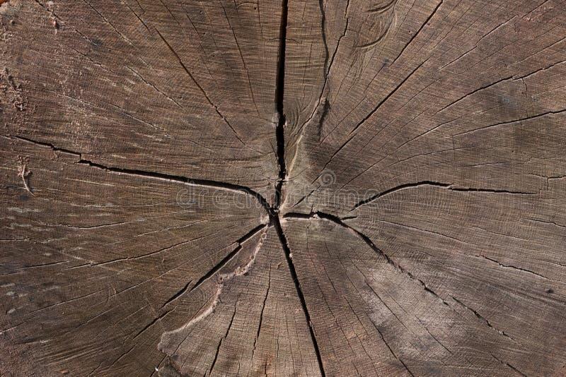 Vieille texture en bois ou fond en bois foncé de grain de Brown photo libre de droits