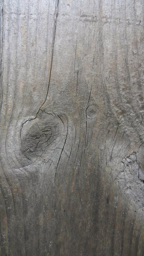 Vieille texture en bois Texture de vieux panneaux en bois Bâche en bois Fond en bois Matériaux en bois pour la conception graphiq photos libres de droits