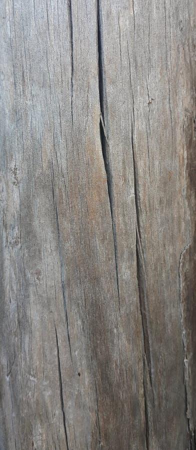 Vieille texture en bois Texture de vieux panneaux en bois Bâche en bois Fond en bois Matériaux en bois pour la conception graphiq image stock