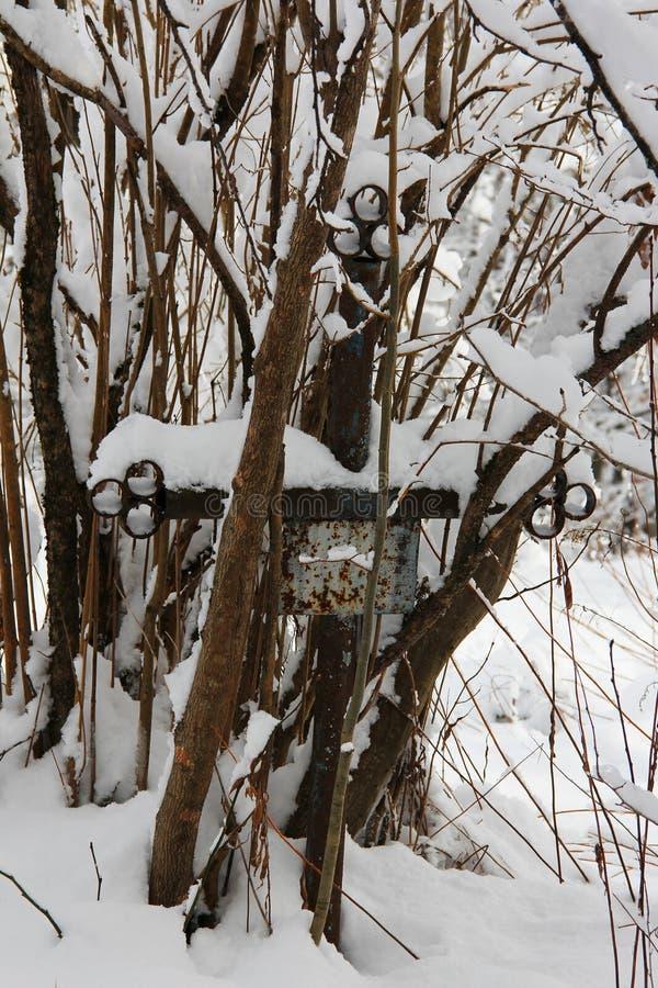 Vieille tombe négligée avec la croix de fer envahie avec des arbres couverts de neige photos stock