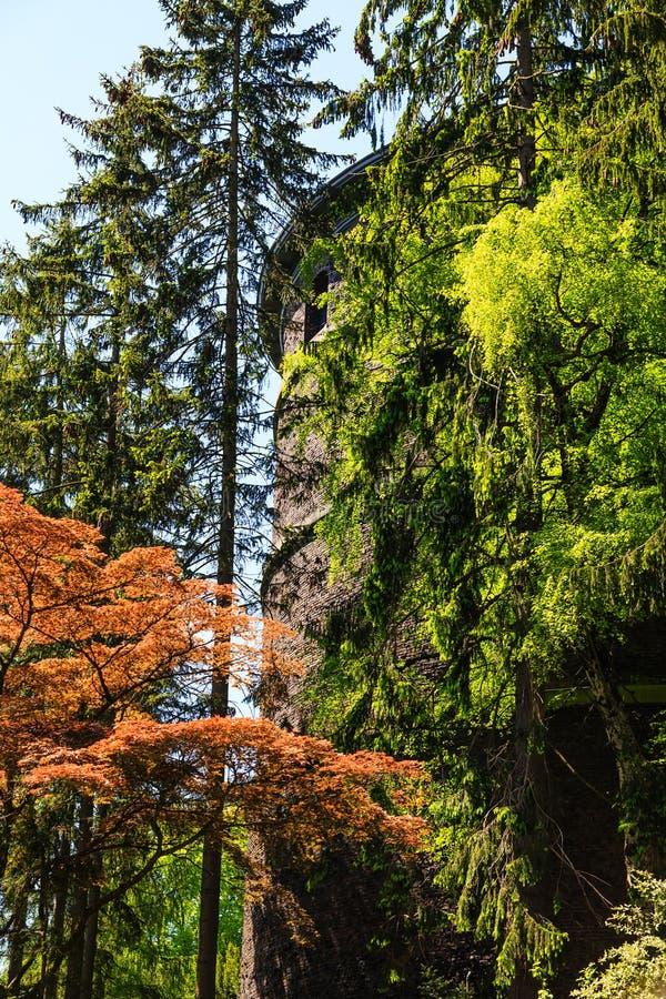 Vieille tour d'eau dans la forêt de Seattle photographie stock