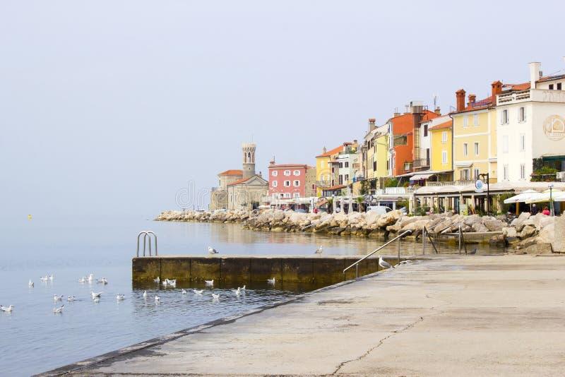 Vieille ville Piran - belle côte de l'Adriatique de Slovène photo libre de droits