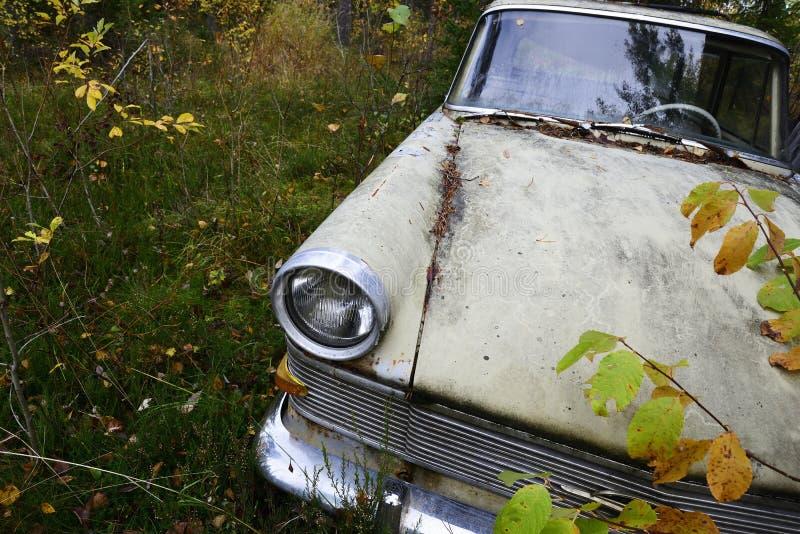 Vieille voiture abandonnée dans la forêt photographie stock libre de droits