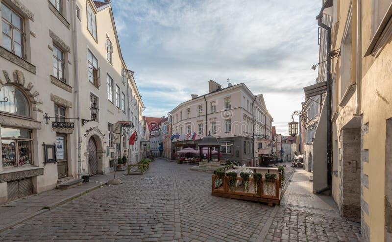 Vieille vue de début de la matinée de ville de l'Estonie Tallinn images libres de droits