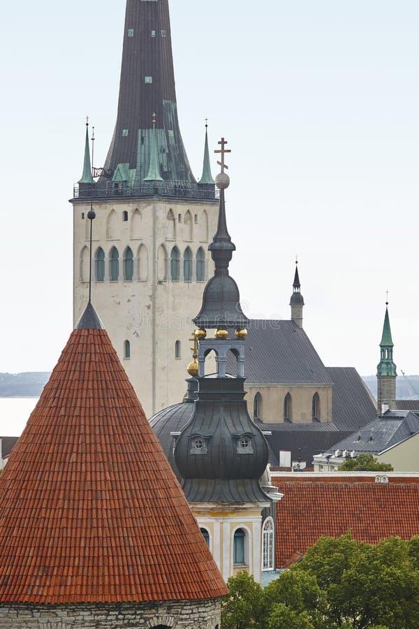 Vieille vue de paysage urbain de ville de Tallinn Point de repère de tourisme l'Estonie image libre de droits