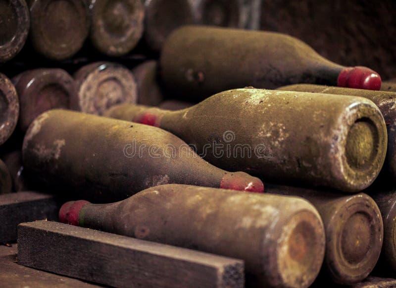 Vieilles bouteilles de vin s'étendant dans des supports dans la cave image stock