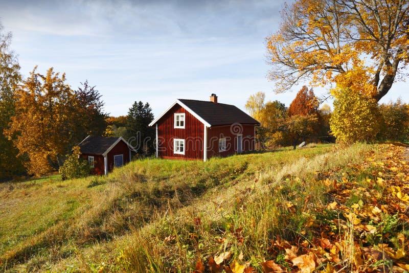 Vieilles couleurs rurales de paysage et d'automne photographie stock