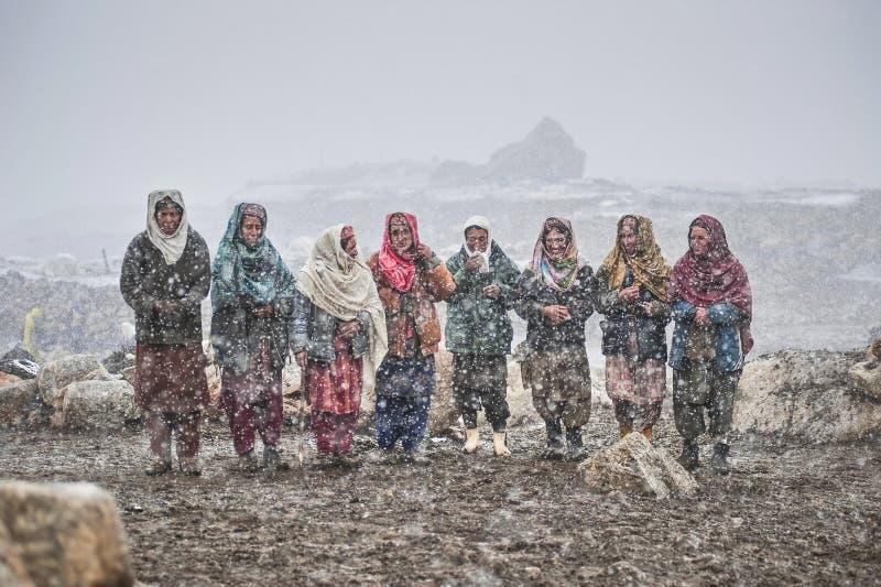 Vieilles dames au milieu des animaux de attente de neige à retourner du pâturage images libres de droits