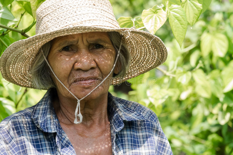 Vieilles femmes asiatiques de portrait images libres de droits