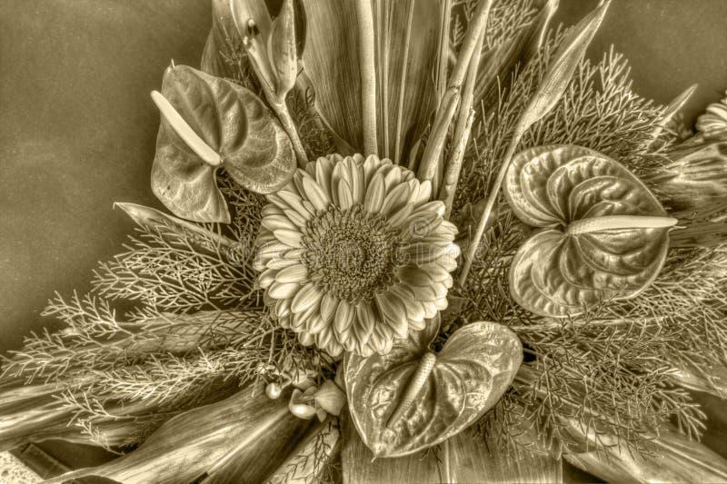 Vieilles fleurs photos stock