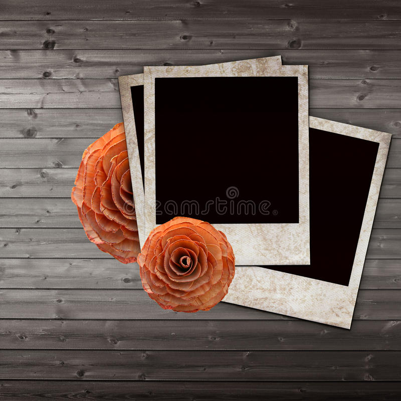Vieilles glissières et roses grunges de papier illustration stock