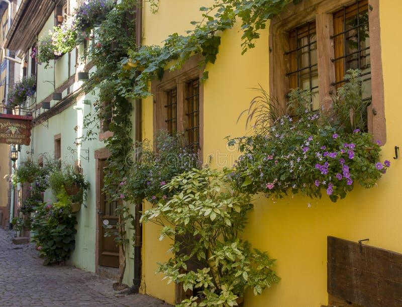 Vieilles maisons boisées dans la ville de Riquewihr en Alsace France photo libre de droits