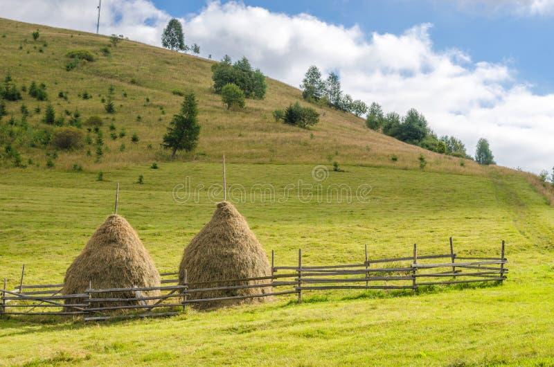 Download Vieilles Piles Traditionnelles De Foin, Scène Rurale Typique En Montagnes Carpathiennes Horizontal Ukrainien Photo stock - Image du automne, moisson: 77159946
