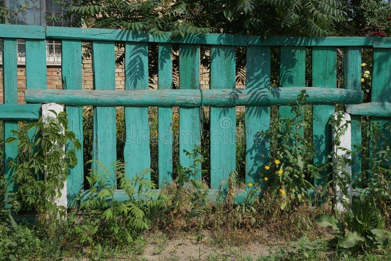 Vieilles planches en bois rurales envahies avec l'herbe verte photographie stock