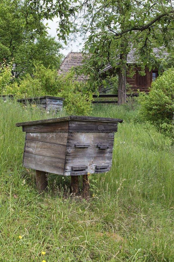 Vieilles ruches en bois dans le rucher antique photographie stock