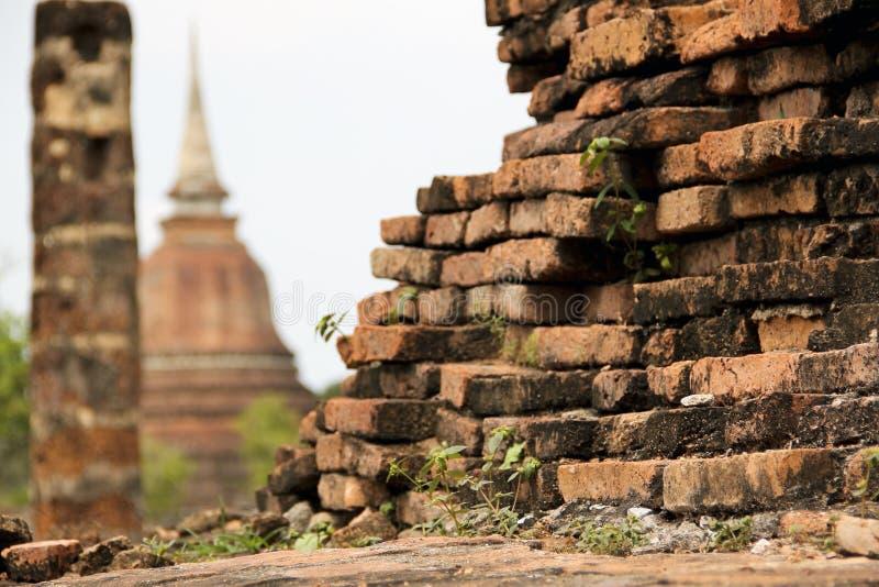 Vieilles ruines envahies de temple de sukhothai de mur de briques photo stock