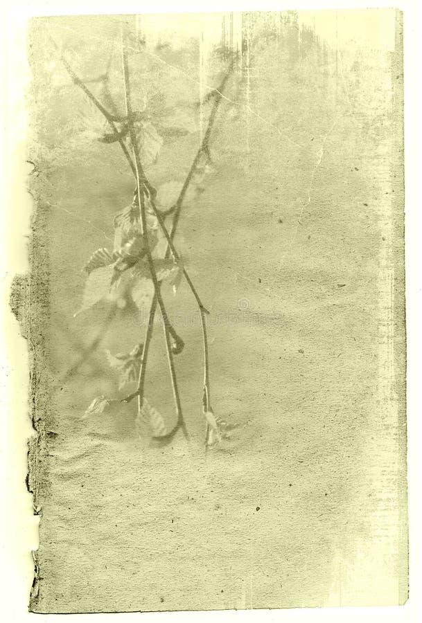 Vieilles textures de fleur de papier illustration de vecteur