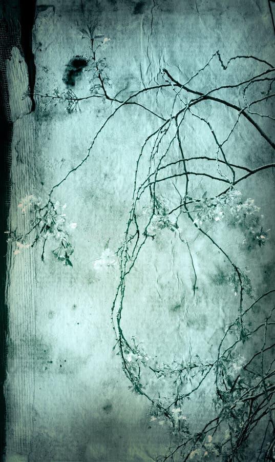 Vieilles textures de fleur de papier photo stock