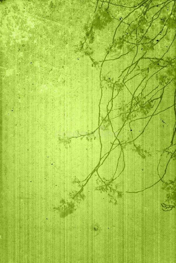 Vieilles textures de fleur de papier image libre de droits
