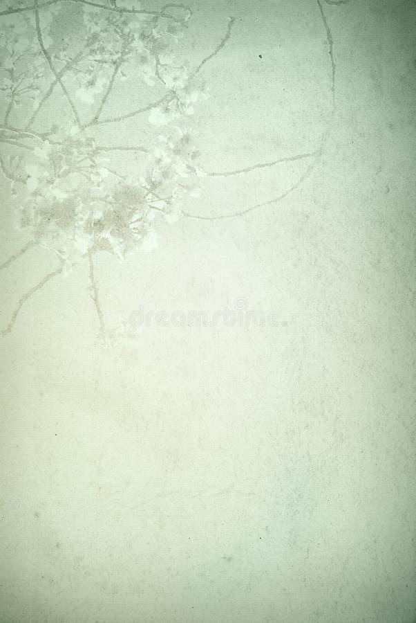 Vieilles textures de fleur de papier illustration libre de droits
