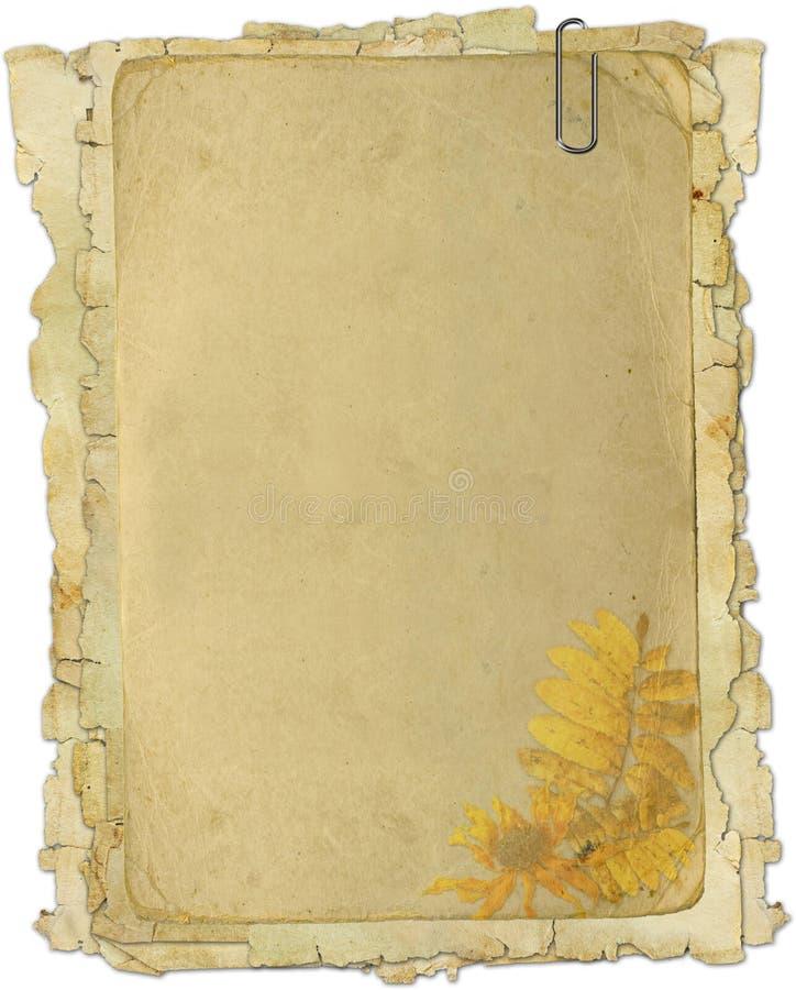 Vieilles textures de papier de fleur illustration de vecteur