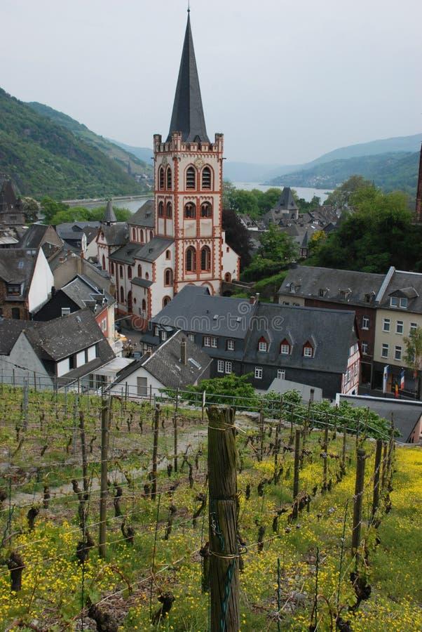 vieilles vignes de vallée de ville du Rhin de côtes image libre de droits