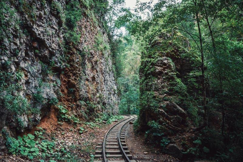 Vieilles voies de chemin de fer ou de chemin de fer ou de train parmi des montagnes dans la forêt tropicale en été photo stock