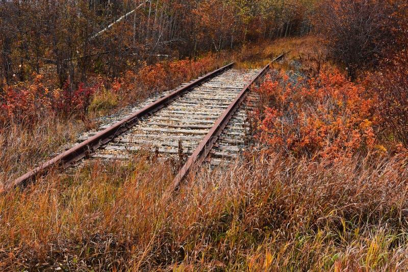 Vieilles voies ferroviaires abandonnées images stock