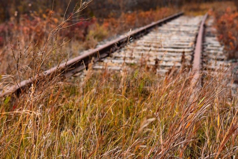 Vieilles voies ferroviaires abandonnées images libres de droits